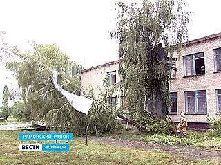 Больше всего в Воронежской области от урагана пострадали три района