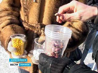 Борисоглебские студенты провели акцию против гриппа