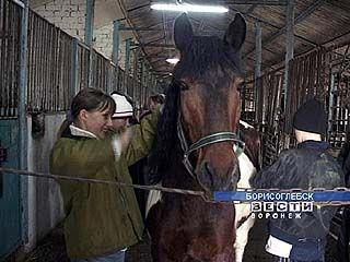 Борисоглебских малышей успешно лечат лошади