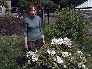 Ботаники и дачники окрестили весну 2009 года капризной