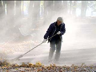 Бурляевские депутаты хотели заставить местных жителей убирать улицы