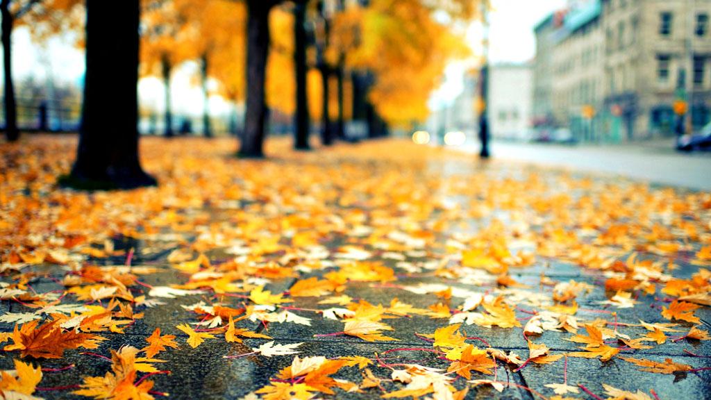 Прогноз погоды на 21.10.17