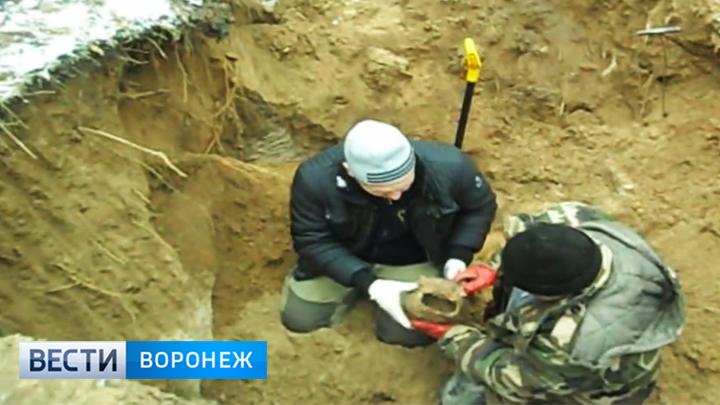 В лесничестве под Воронежем поисковики нашли останки ещё 52 репрессированных