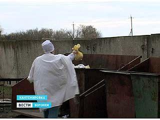 Человеческий эмбрион на свалкe в Кантемировском районе попал случайно