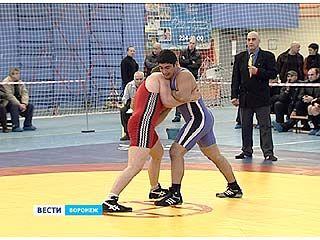 Чемпионат России по греко-римской борьбе прошёл в Воронеже