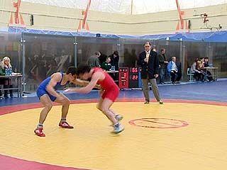 Чемпионат России по вольной борьбе прошел в Воронеже