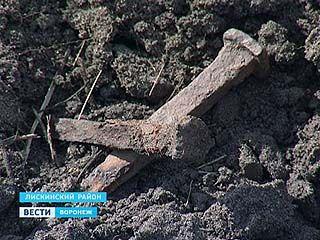 ⌠Черные археологи■ провели раскопки в районе Петровской судоверфи
