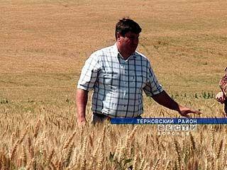 Что такое зерновая интервенция знают в Терновском районе