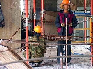 Что ждет трудовых мигрантов в Воронежской области?