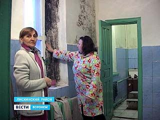 Чтобы избавиться от плесени, жильцам общежития советуют не готовить и не стирать