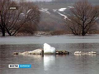 Дамбу через реку Полубянка в Острогожском районе восстановили