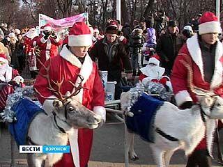 Дед Мороз из Великого Устюга побывал в Воронеже с упряжкой оленей