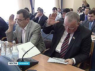 Депутаты городской думы решили увеличить доходную часть бюджета