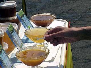 Десятки сортов меда представлены на выставке-ярмарке