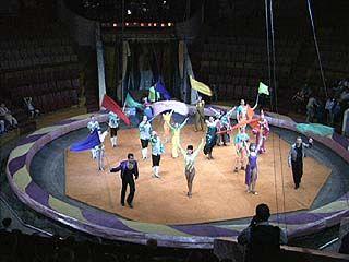 Дети-сироты побывали в цирке на представлении дрессировщиков Багдасаровых