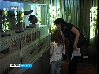 Детям до 18 - в краеведческий музей можно попасть бесплатно