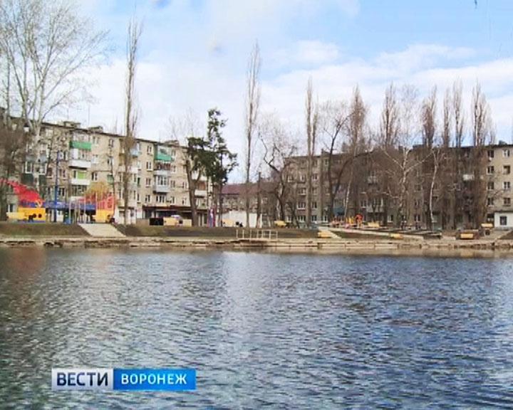 Экологи: В озёрах Воронежа рыбы в принципе не могут существовать