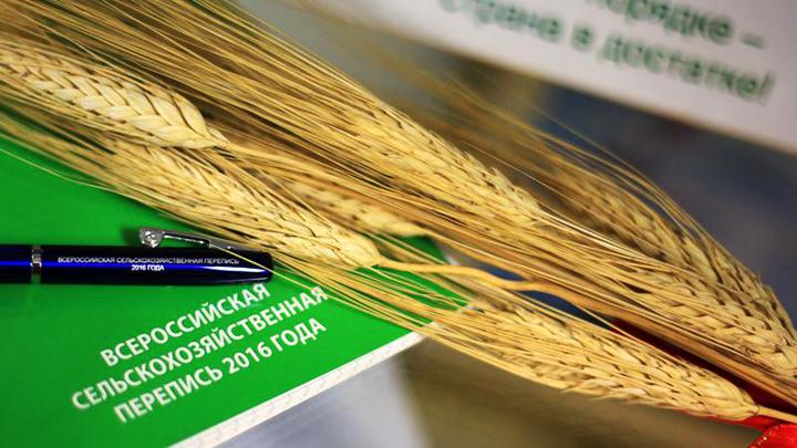 Итоги Всероссийской сельскохозяйственной переписи 2016 года обсудили в Воронеже