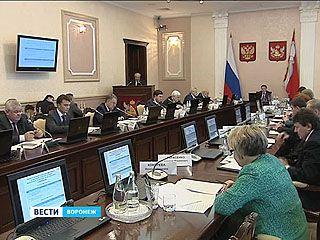 Эффективность господдержки в Воронежском регионе в целом достаточно ощутима