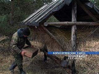 Егерям и охотоведам области больше нечего охранять