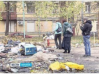Экологи подняли вопрос возникновения свалок в Воронеже