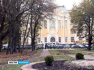 Экзотические деревья из парка ВГАУ выкопал 33-летний житель Воронежа