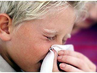 Эпидемия гриппа все-таки пришла в Воронежскую область