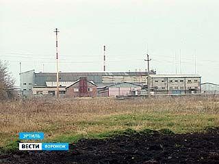 Эртильский завод растительных масел накажут за грубые нарушения санитарных норм