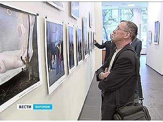 Ещё одна любопытная фотовыставка открылась в Воронеже