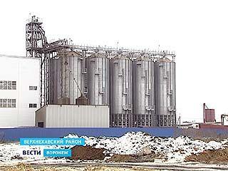 """Ещё одна структура """"Маслопродукта"""" признана банкротом"""