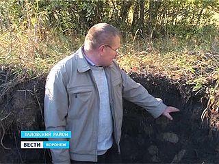 Эталонный чернозём остался только в Каменной степи. Какая она - воронежская целина?