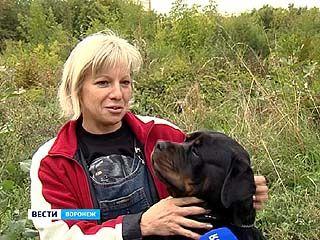Этой осенью в Воронеже соберутся хендлеры
