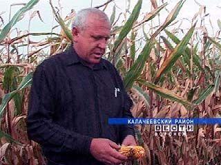 Ферме Ивана Зубова конкуренция не страшна