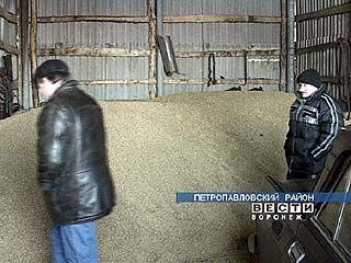 Фермеры возродили одно из крупнейших хозяйств Петропавловского района