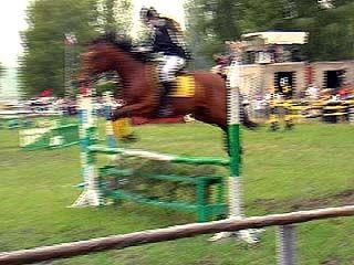 Финишировал открытый турнир по конному спорту