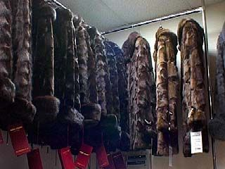 Галантное ограбление: в Воронеже украдено 130 шуб