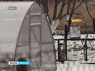 """Газпром снова проиграл в суде владельцу садового участка в кооперативе """"Дальние сады"""""""