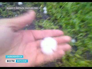Град, размером с перепелиное яйцо выпал в Новохоперском