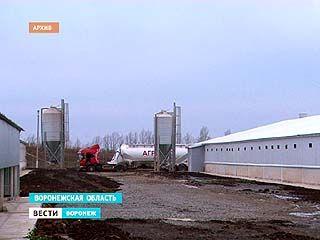 """Группа компаний """"АГРОЭКО"""" представила уникальный процесс удобрения полей"""