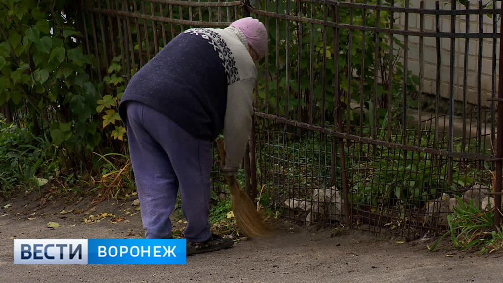 Жители Воронежа добиваются разрешения благоустраивать палисадники