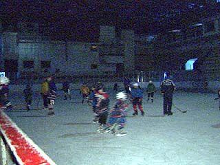 Хоккей и фигурное катание в Воронеже переживают не лучшие времена