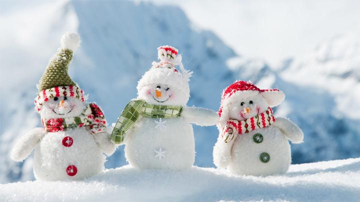 В Воронежской области на рабочей неделе установится морозная погода