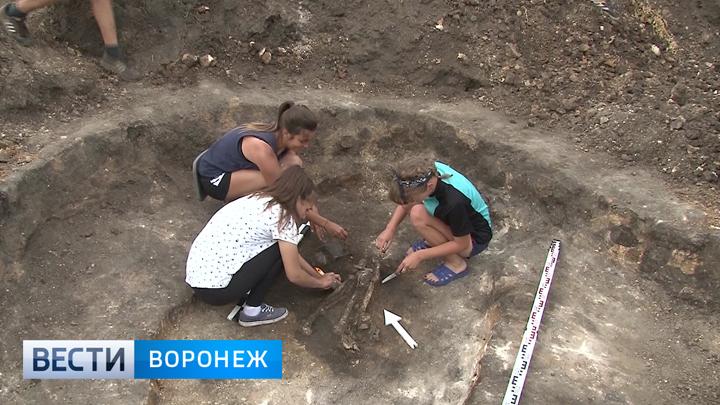 Воронежские школьники и студенты исследовали захоронения эпохи бронзового века