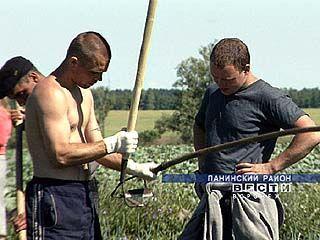 Инспекцию будущего урожая провели в колонии-поселении