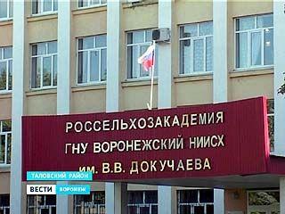 Институт имени Докучаева повысил статус до зонального