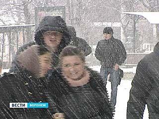 Из Воронежского региона зима не собирается уходить до конца месяца