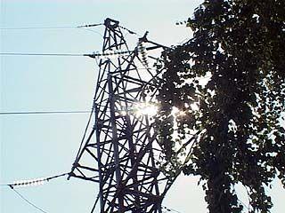 Из-за аномальной жары электросети региона работают с увеличенной нагрузкой