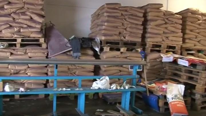 Трое воронежцев ответят в суде за подделку семян с ущербом владельцу бренда в 47 млн рублей