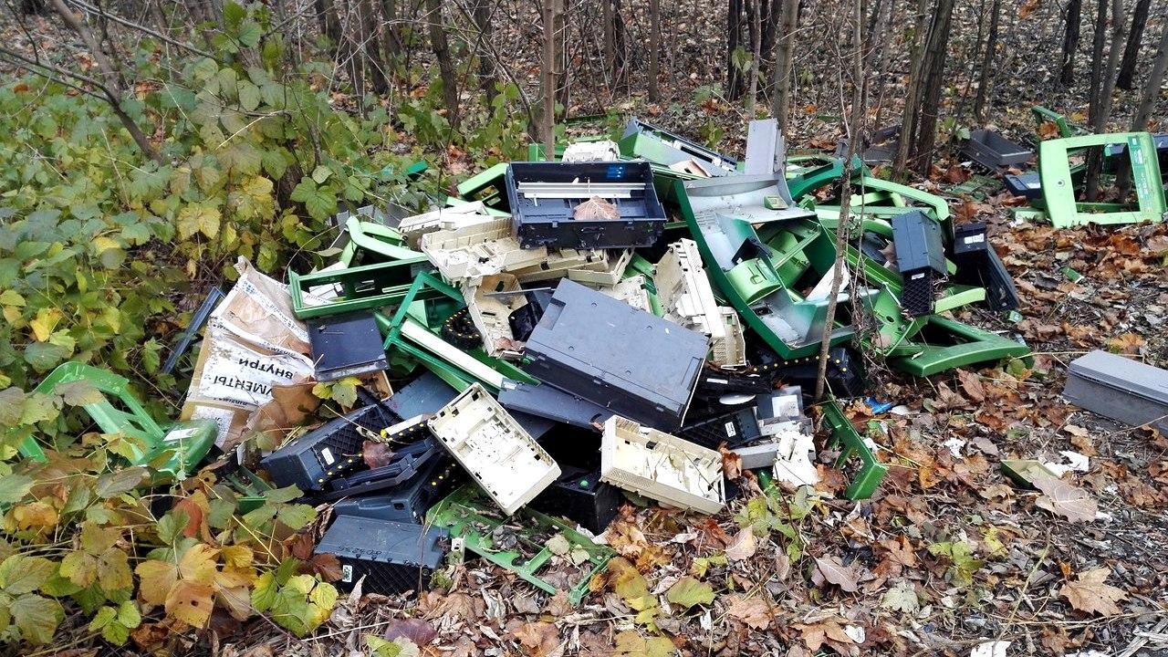 Горожанин нашёл «кладбище» банкоматов в лесу под Воронежем
