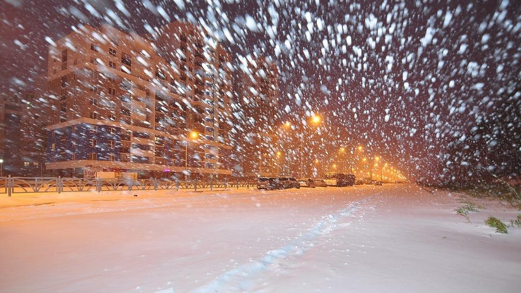 МЧС предупредило о метели в Воронежской области
